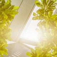 gas natural mejora la calidad del aire en las ciudades