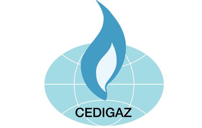 Cedigaz prevé para el gas un papel cada vez más relevante hasta 2040